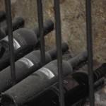Cellar Bottles
