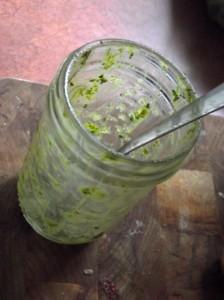 Garden Fresh Cilantro Pesto